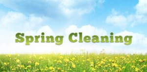 SPRING CLEAN YOUR BRAIN